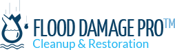 Flood Damage Pro - Reston